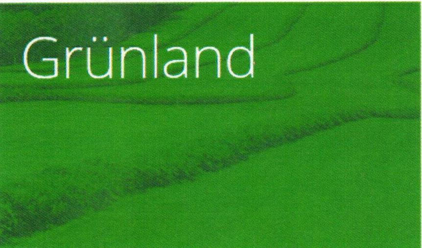 Gruenland